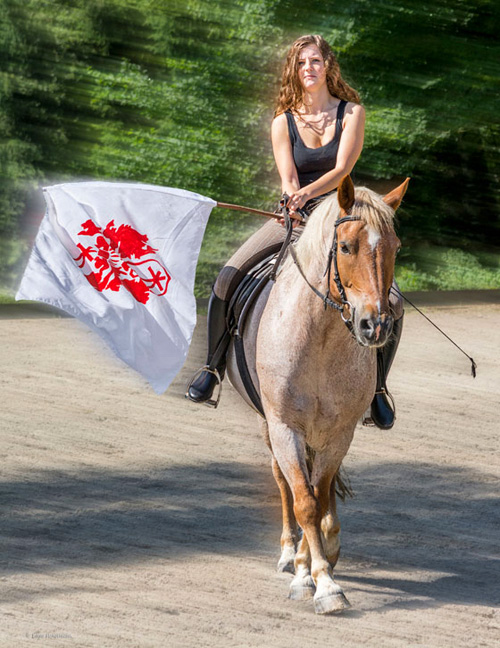 Willkommen bei Erlebnis Pferd – Heilpädagogisches Reiten, gefördert durch die Annette-Schlichte-Steinhäger Stiftung