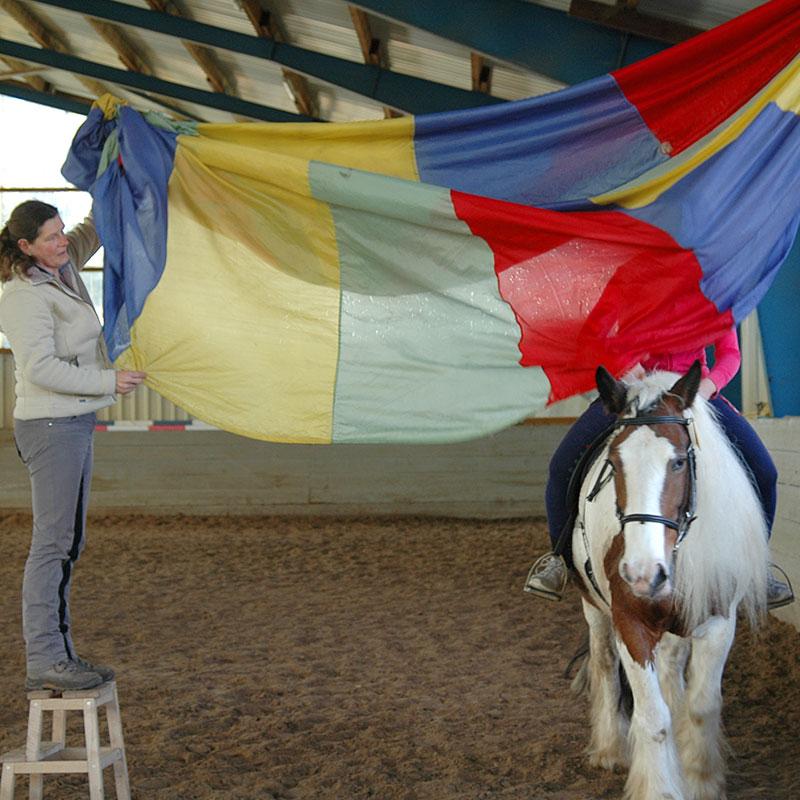 """""""Vertrauensvoller Umgang zwischen Reiter und Pferd"""" Gerade bei unbekannten Situationen sollte man sich aufeinander verlassen können und sich gegenseitig Vertrauen."""