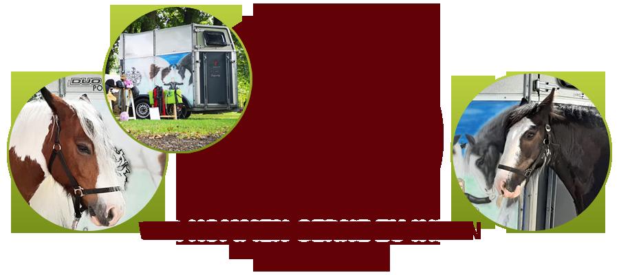 Erlebnis Pferd kommt in einem Umkreis von 25 Kilometern gerne zu Ihnen. Das Einzugsgebiet von Erlebnis Pferd erstreckt sich von Steinhagen, Brockhagen, Isselhorst, Versmold, Oesterweg, Bielefeld bis Harsewinkel und Umgebung.